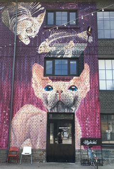 """Mikä iloinen yllätys - Loomelinnakissa vastassa on valtava kissa, jolle oli maistunut evääksi muutama kala. Loomelinnakin, """"Tallinnan Kaapelitehtaan"""", alueella seinissä on mielenkiintoisia, moderneja maalauksia bongattavaksi. #Loomelinnak #kissa #cat #tallinn #eckeroline"""