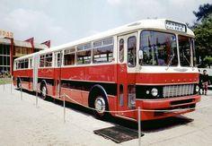 Motor nélkül a városligeti kiállításon. Nice Bus, Busses, Commercial Vehicle, Public Transport, Old Cars, Fiat, Cars And Motorcycles, Transportation, History