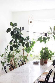 roomed-eetkamer-botanisch-8