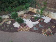 jardin minéral et végétal | massif mineral cliquez ici massifs de cactées le…