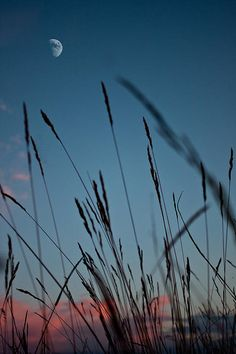 Title  At The Fall Of Night   Artist  K Hines   Medium  Photograph - Photograph