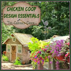 Chicken Coop Design Essentials, Details & Luxuries