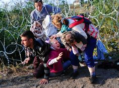 As Hungary scrambles to ramp up defences on its border with Serbia, refugees   continued to surge into the country in record numbers, police figures   confirmed. Some 3,241 migrants, including almost 700 children, arrived in   Hungary on Wednesday August 26, 2015, the highest ever number, according to   a police statement.