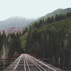 Photo by @carinngg_is_creeepyy. Vance Creek Viaduct. #livefolk #liveauthentic