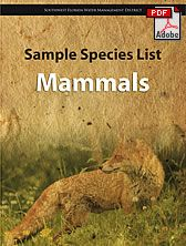 SWFWMD's amazing free downloadable guides. Perfect for Sarasota and Manatee County. Guides available for mammal, butterflies, birds, insects, frogs & toads, reptiles, trees & shrubs, wildflowers, and natural communities