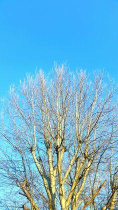 Winter (part3)