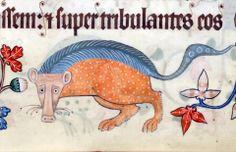 Luttrell Psalter, England ca. 1325-1340