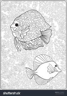Pattern With Decorative Corals And Sea Or Aquarium Fish Vector Illustration Coloring Book For