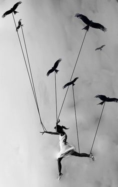 Volar (:
