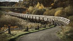 Wooden Bridge | Outdoor Photography Photo Critique – Wooden Bridge in Autumn