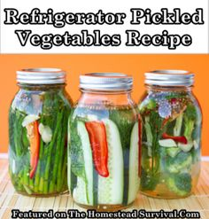 The Homestead Survival | Refrigerator Pickled Vegetables Recipe | http://thehomesteadsurvival.com
