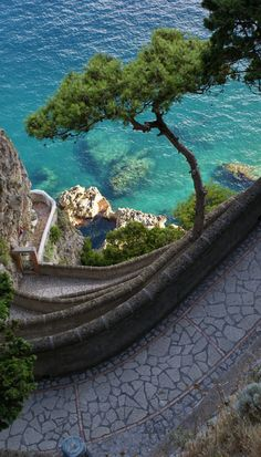 Path to the Sea, Isle of Capri, Italy - Italia - Isola di Capri - Sentiero sul mare Places Around The World, Oh The Places You'll Go, Places To Travel, Places To Visit, Around The Worlds, Travel Destinations, Hidden Places, Holiday Destinations, Dream Vacations