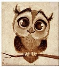 Image result for Realistic Owl Drawings