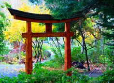 japaneese-garden-painterly-by-terrill-welch-img_4510.jpg 800×585 pixels