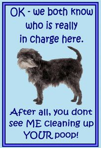 lots of dog breeds and sayings in our ebay store at http://www.magnetsandhangers.co.uk