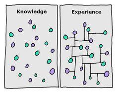 knowledge versus wisdom