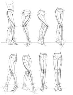 Anatomy Drawing Tutorial anatomy for artists - Drawing Legs, Drawing Sketches, Cool Drawings, Drawing Poses, Drawing Drawing, Drawing Body Proportions, Female Drawing, Horse Drawings, Life Drawing