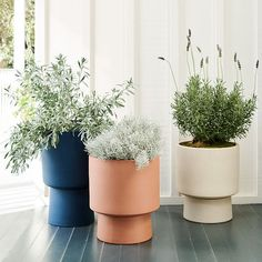 Elevate your patio, deck or terrace with our shapely Bishop Pedestal Planters. Made from frost-proof earthenware so you can leave them outside year-round, they add a pop of color, height and drama to your plants. The pot has drainage holes and lif… Wood Planters, Indoor Planters, Ceramic Planters, Outdoor Plants, Outdoor Gardens, Indoor Outdoor, Planter Pots, Ikea Planters, Indoor Garden