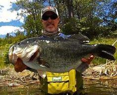 Bassmaster Bass Fishing Tips and Fishing How To | Bassmaster