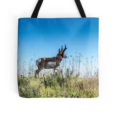 """""""Pronghorn King of the Mountain"""" Tote Bags by Debra Martz 