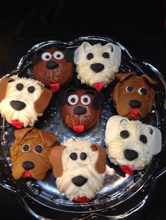 Jack & Bandit- Variety of dog cupcakes Puppy Dog Cupcakes, Puppy Cake, Kid Cupcakes, Cupcake Cookies, National Cupcake Day, Desserts With Biscuits, Dog Cakes, Cute Cakes, Creative Cakes