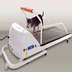 "-""PetRun PR710 Dog Treadmill"" - BD Luxe Dogs & Supplies"
