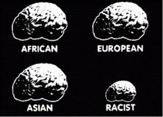 Paper on racism