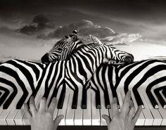 Si vous êtes un fan des illusions d'optique et de retouches photographiques, alors vous allez adorer ces images surréalistes de…