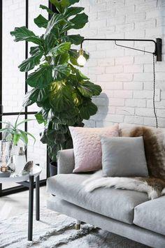 sofa-Jono-Fleming-apartment