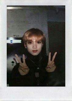 Polaroid Pictures, Polaroids, Ntc Dream, Nct Group, Kpop, Winwin, Taeyong, Boyfriend Material, Jaehyun