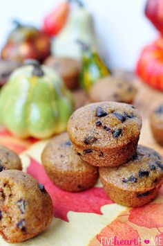 The BEST Chocolate Chip Pumpkin Bread (makes multiple loaves or muffins) | {Five Heart Home}