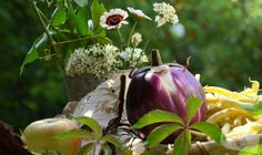 Auberginen und Bohnen