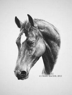 Equestrian Culture's Portrait Project: Mary Kacsur, Equine Artist