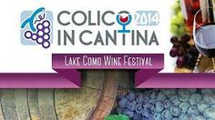 Lake Como Wine Festival in #Colico  http://blog.hotel-posta.it/en/?p=1039