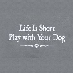 Life is short, Play with your #Dog