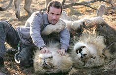 Kevin Richardson Lion Whisperer