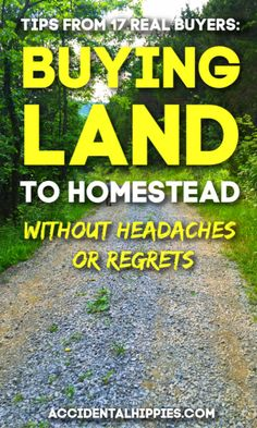 17 Tips from Real Homestead Land Buyers Homestead Land, Homestead Survival, Survival Prepping, Survival Skills, Survival Gear, Homestead Living, Emergency Preparedness, Self Sufficient Homestead, Survival Quotes