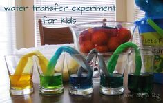 Paper towel water transfer science experiment. Best: use 5 cups. Fill first, third and fifth with primary colors. Middle 2 empty ones will turn orange and green. So pretty. Total: 3 hours.
