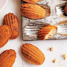 {Chocolate Chip Madeleines} must try this!