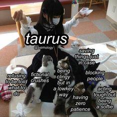 Zodiac Signs Chart, Zodiac Signs Taurus, My Zodiac Sign, Zodiac Facts, Gemini Facts, Gemini Life, Taurus And Gemini, Taurus Woman, Taurus Memes