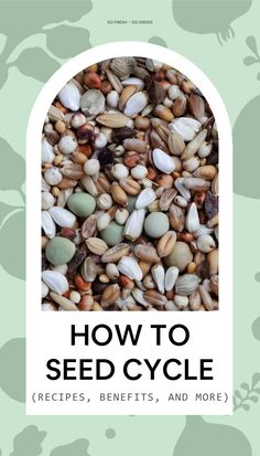 Seed cycling for fertility has many amazing benefits. Take a look at how to seed cycle, and get some great seed cycling recipes as well! Holistic Medicine, Holistic Wellness, Holistic Healing, Fertility Food For Women, Fertility Foods, Seed Cycling, Hot Flashes, Hormone Balancing, Menstrual Cycle
