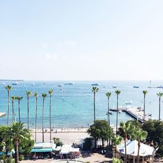 Cannes you tell I'm happy to be back?!