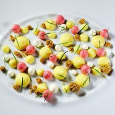 Deconstructed Key Pie, Graham Cracker Streusel, Key lime Curd, Creme Fraiche, Raspberry Meringue for my book for fall 2014