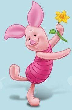 Piglet - piglet Photo