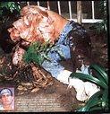Lo que no sabes que no sabes: Los 20 asesinatos mas Horroroficos de ...