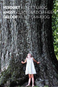 Verdriet kijkt terug, angst kijkt om zich heen, geloof kijkt omhoog   http://www.dagelijksebroodkruimels.nl/bijbelse-wijsheden/verdriet-kijkt-terug-angst-kijkt-om-zich-heen-geloof-kijkt-omhoog/