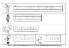 frühblüher-beschriften-1.pdf | frühling | sachunterricht grundschule, frühblüher grundschule és