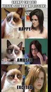 Resultado de imagen de grumpy cat