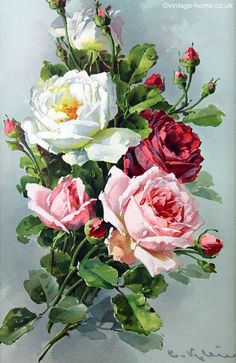 Stunning Victorian Roses Print by Catherine Klein: www.vintage-home…. Stunning Victorian Roses Print by Catherine Klein: www.vintage-home…. Art Floral, Floral Vintage, Vintage Flowers, Vintage Art, Vintage Paintings, Victorian Paintings, Vintage Prints, Pink Roses, Pink Flowers