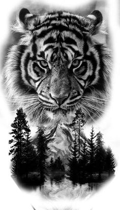 Tiger Face Tattoo, Tiger Tattoo Sleeve, Big Cat Tattoo, Tiger Tattoo Design, Tattoo Design Drawings, Tattoo Sleeve Designs, Tattoo Sketches, Tattoo Designs Men, Tattoo Ink